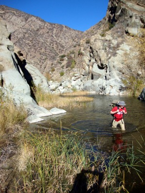 Paul makes his way through the creek in the bright afternoon light. The water was a lot colder than expected!